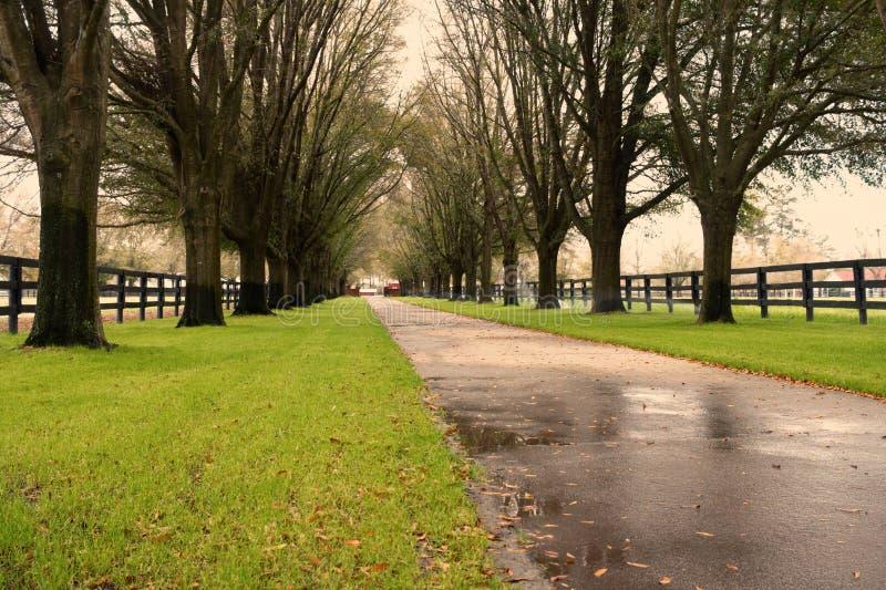 Strada privata di Oakwood fotografia stock