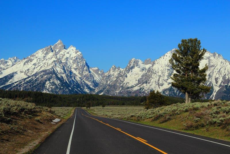 Strada a Rocky Mountains alla luce di mattina, grande parco nazionale di Teton, Wyoming fotografia stock