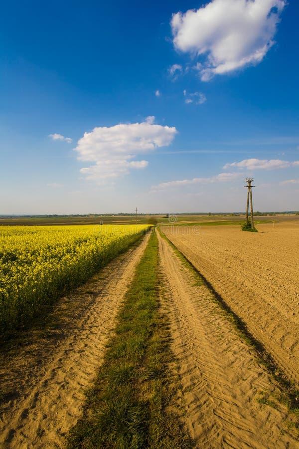 Strada rurale immagini stock libere da diritti
