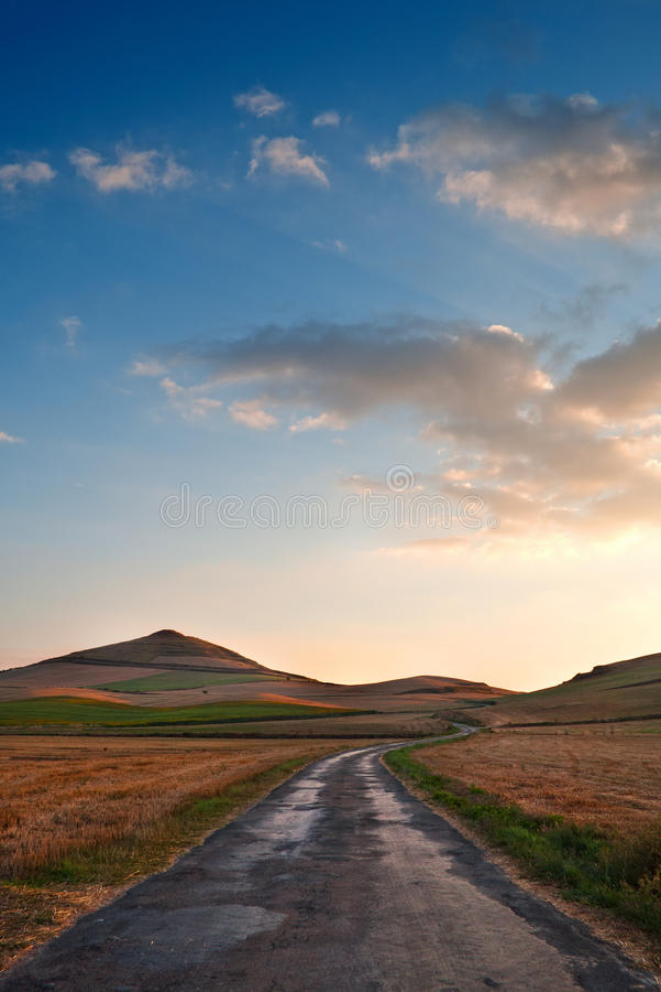 Strada rurale fra i campi gialli di grano, appena raccolti, al tramonto immagini stock