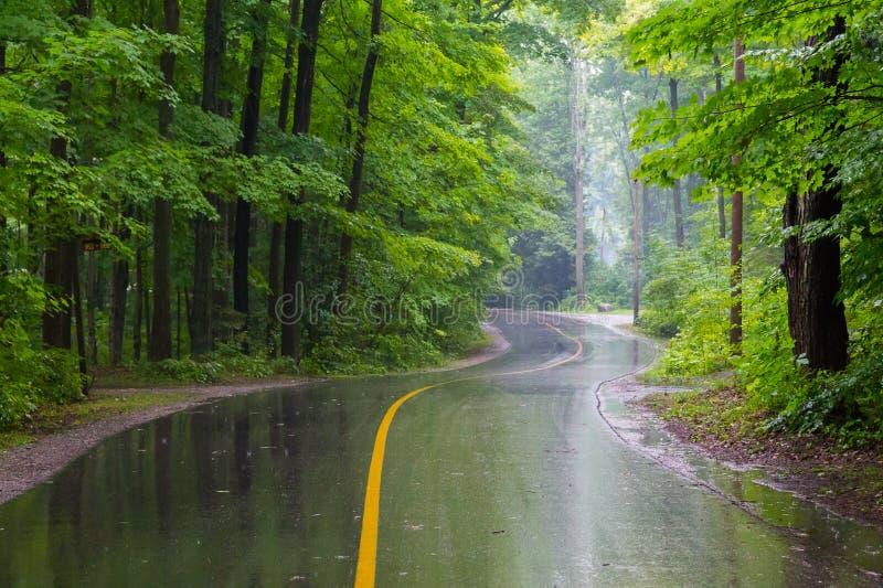 Strada rurale un giorno piovoso immagine stock libera da diritti