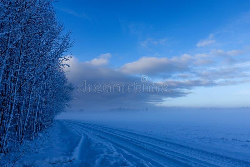 Strada rurale vuota lungo il bordo della foresta immagini stock