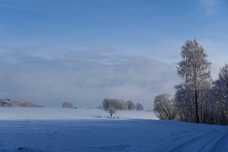 Strada rurale vuota lungo il bordo della foresta nell'inverno fotografie stock libere da diritti