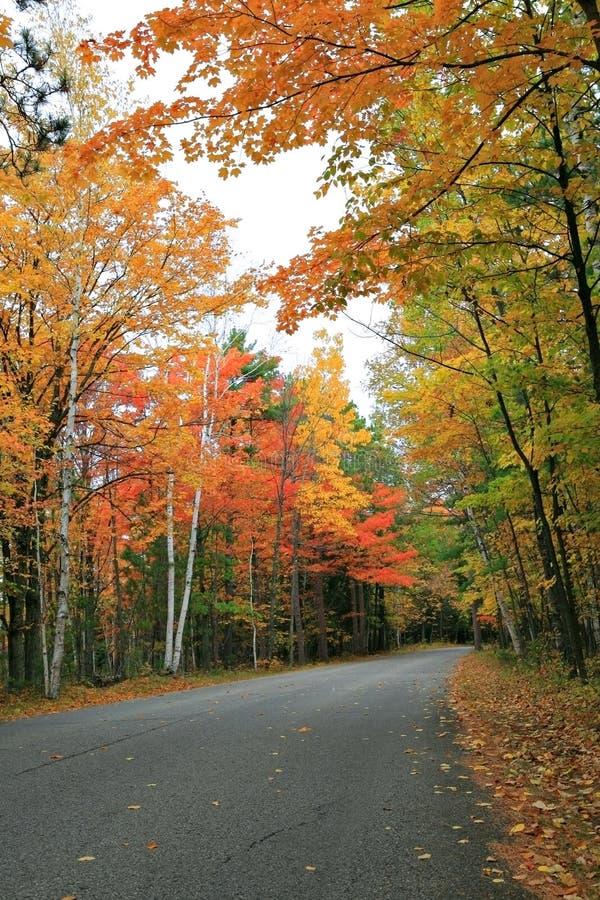 Strada scenica di autunno variopinto esterno immagini stock libere da diritti