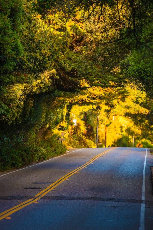 Strada scenica di California fotografia stock libera da diritti