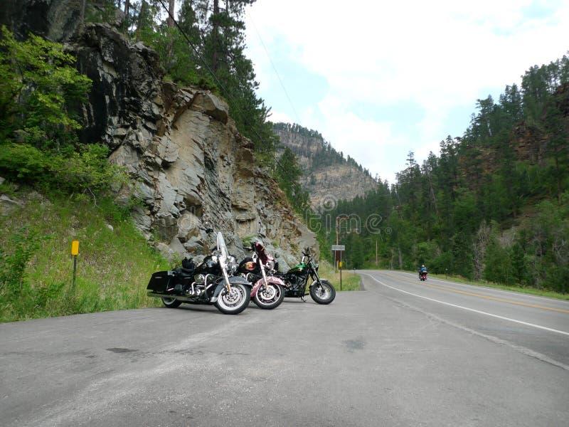 Strada secondaria scenica nel Black Hills, Sud Dakota del canyon dell'aguglia imperiale fotografia stock libera da diritti
