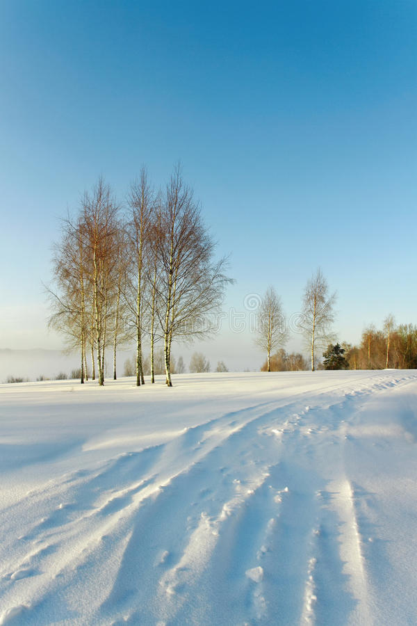 Strada Snowbound. immagine stock libera da diritti