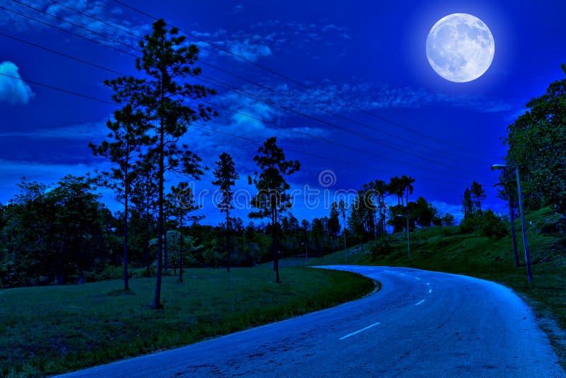 Strada sola nel paese alla notte immagine stock