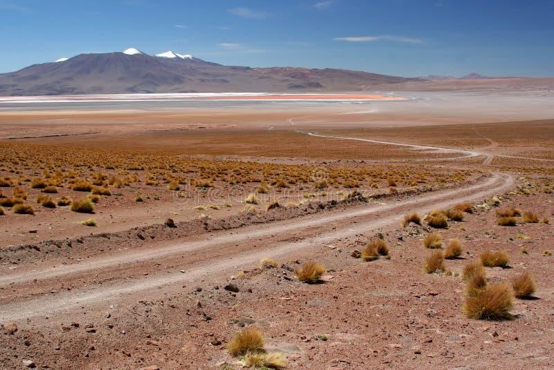 Strada sporca nel deserto fotografia stock