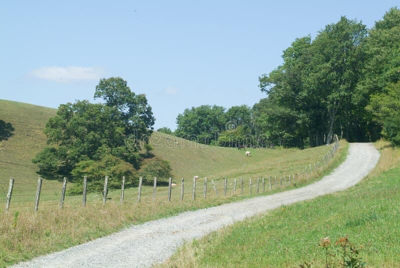 Strada stretta attraverso una valle della montagna immagini stock