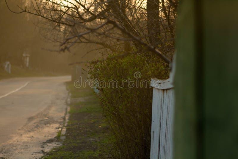 Strada sul periodo di tramonto immagini stock libere da diritti