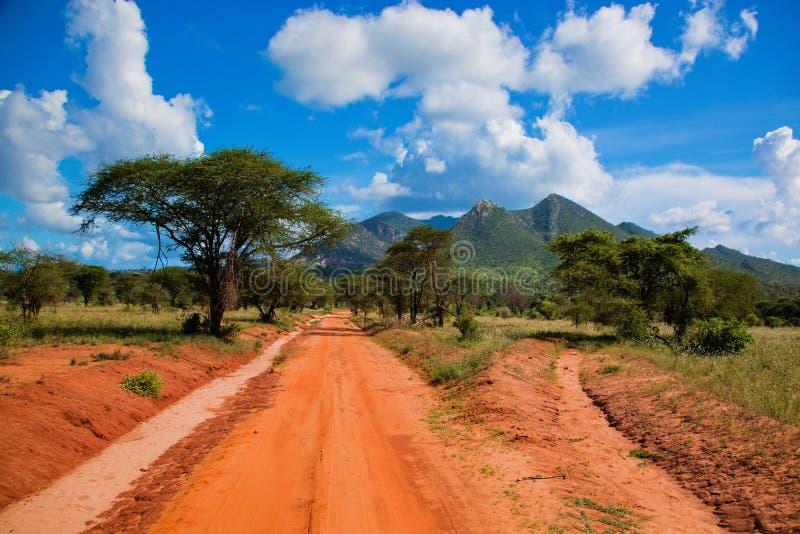 Strada a terra rossa, cespuglio con la savanna. Tsavo ad ovest, Kenia, Africa immagine stock libera da diritti