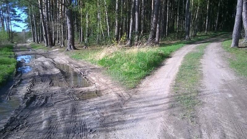 Strada trasversale e due percorsi differenti immagine stock