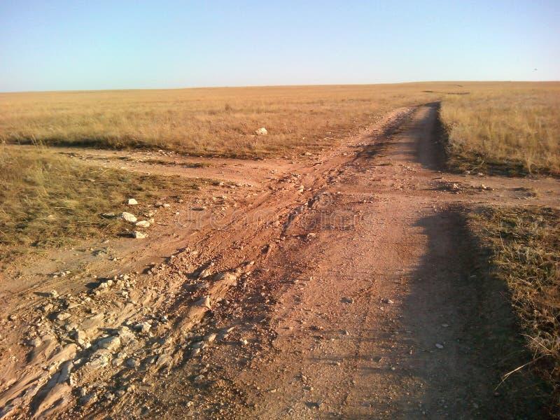 Strada trasversale nella steppa e nel cielo blu fotografia stock libera da diritti