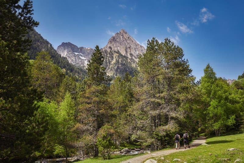 Strada in un bello parco nazionale di Aiguestortes i Estany de Sant Maurici della montagna spagnola di Pirenei in Catalogna fotografia stock