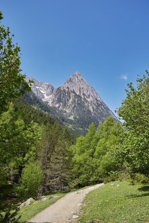 Strada in un bello parco nazionale di Aiguestortes i Estany de Sant Maurici della montagna spagnola di Pirenei in Catalogna fotografia stock libera da diritti