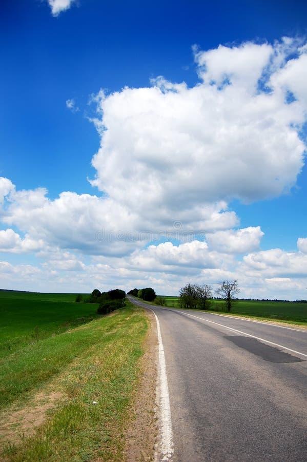 strada vicina verde del campo immagine stock libera da diritti