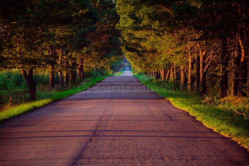 Strada vuota fotografia stock libera da diritti