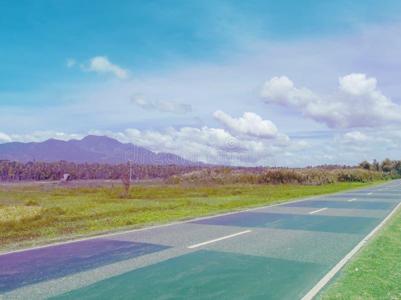Strada vuota nel campo verde di estate Foresta e montagna tropicali della palma Rosa e foto tonificata blu fotografie stock