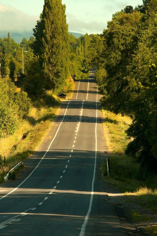 Strada vuota nel Cile del sud fotografie stock