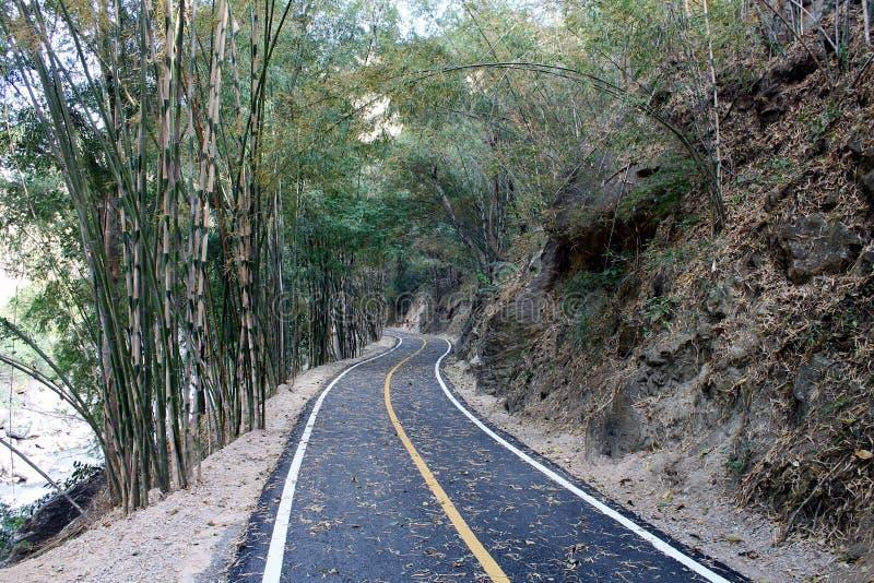 Strade curvate in foresta di bambù immagini stock libere da diritti
