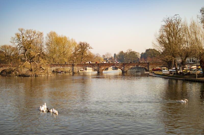 Straford sur des bateaux et des personnes d'avon de rivi?re avec des canards et des arbres photographie stock libre de droits