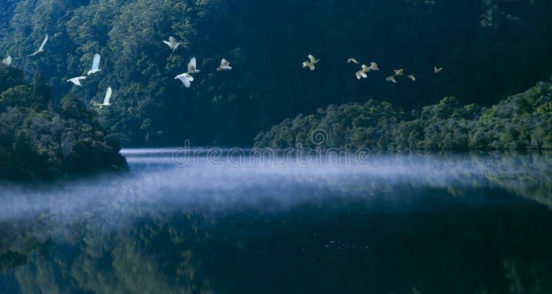 Strahan Tasmania_0646s_jpg 免版税库存图片