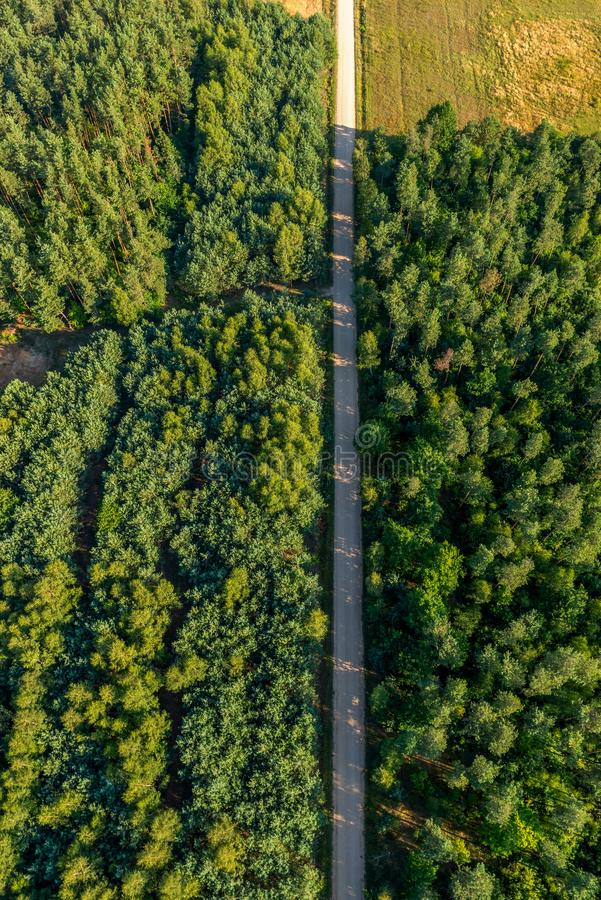 An aerial view from above of a road in the forest stock photos