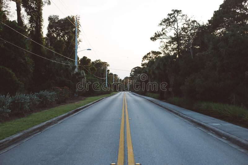 Straight Empty Road Between Trees during Daytime stock image