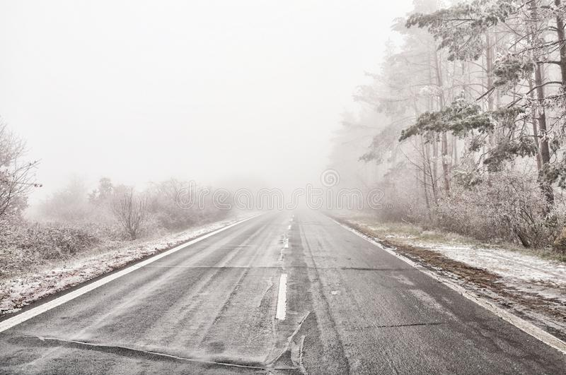 Straight empty wet asphalt road during foggy conditions royalty free stock images