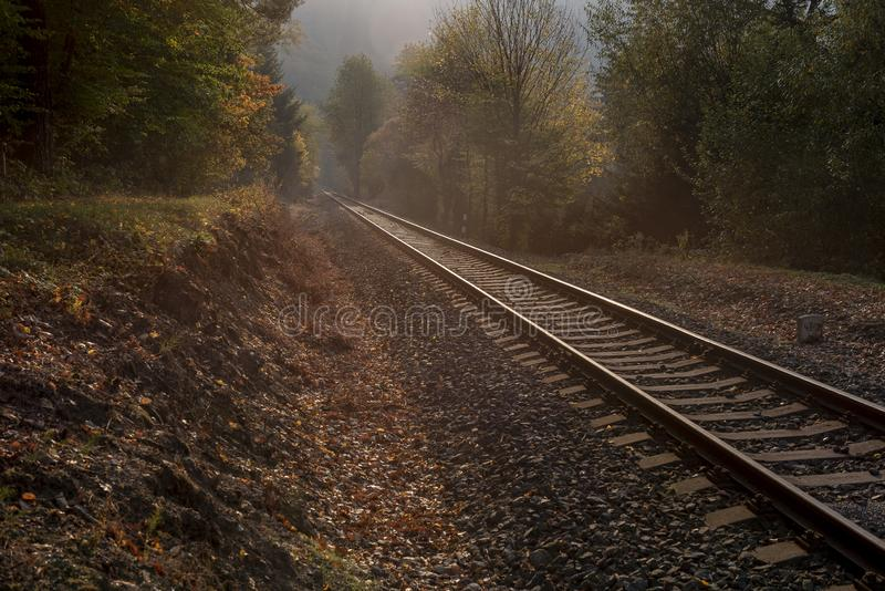 Straight long rails leading between colorful trees at sunset. In autumn royalty free stock photography