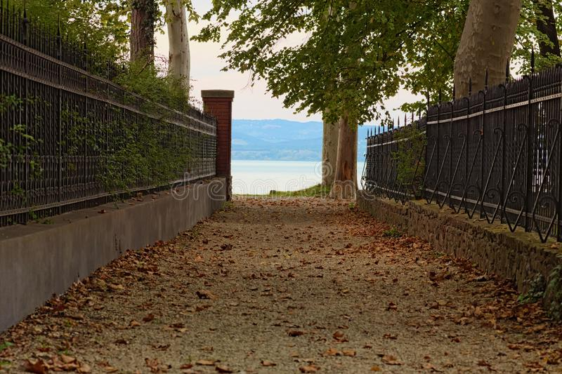 Straight pathway to Lake Balaton and Plane-tree alley between two fences. Lake Balaton, Balatonfoldvar, Hungary stock photo