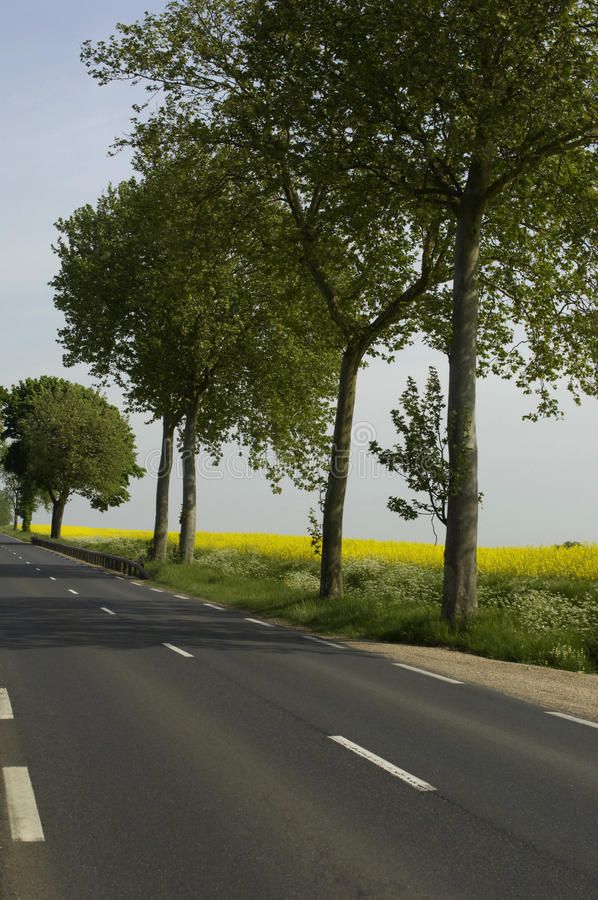 Download Straight Road Royalty Free Stock Photo - Image: 13887385