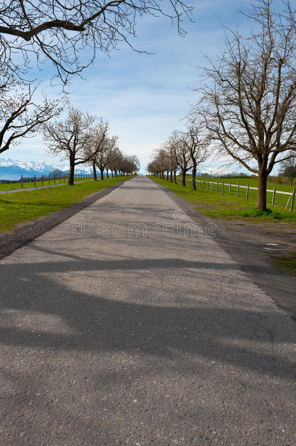 Download Straight  Road stock image. Image of shade, hill, snow - 28099707