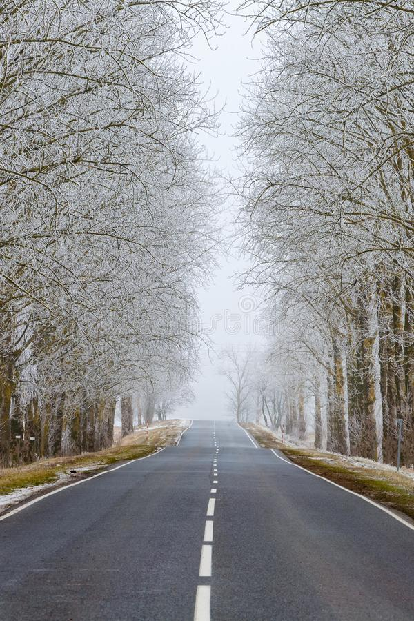 Straight road in the countryside. Trees in hoarfrost. Seasonal royalty free stock photography