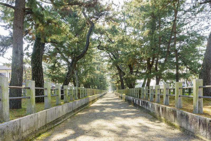 Download The Straight Walkway In Front Of The Historical Horyu Ji Stock Photo - Image: 83720827