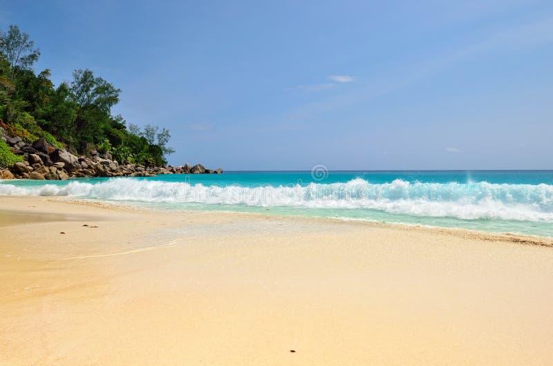 strandö tropiska seychelles royaltyfri bild