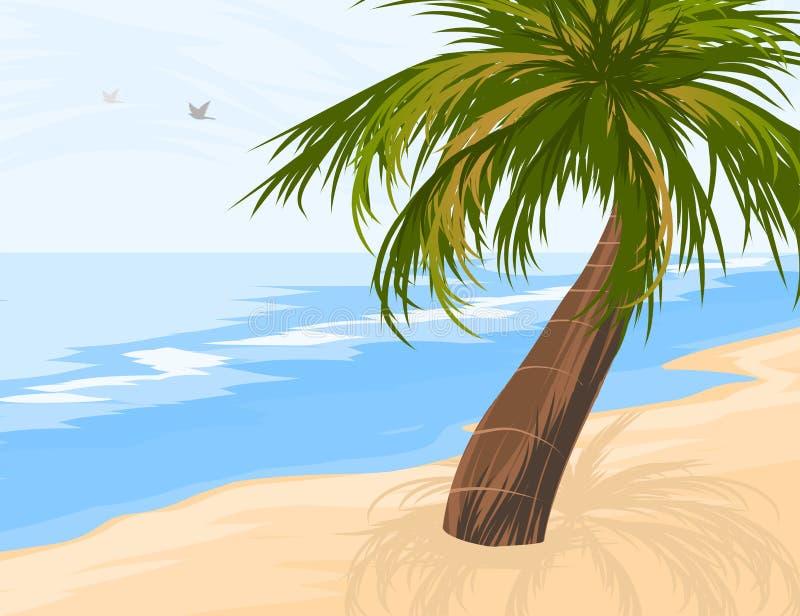 strandön gömma i handflatan paradistreen vektor illustrationer