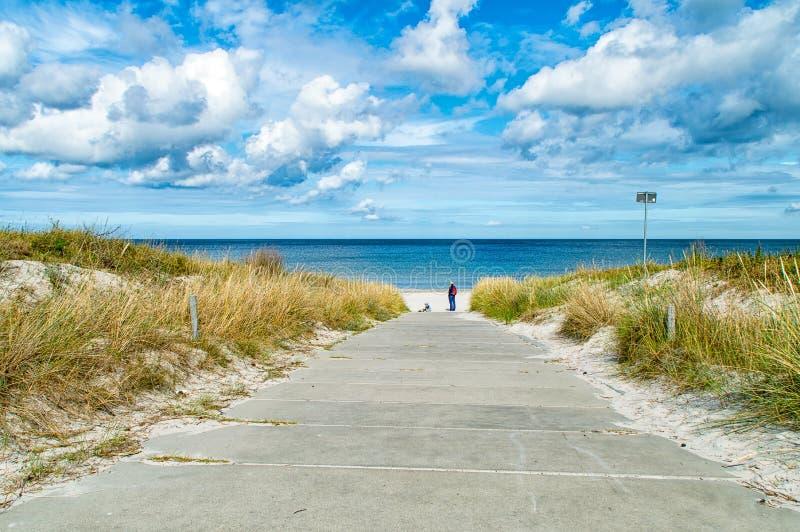 Strand auf der Ostsee lizenzfreie stockbilder