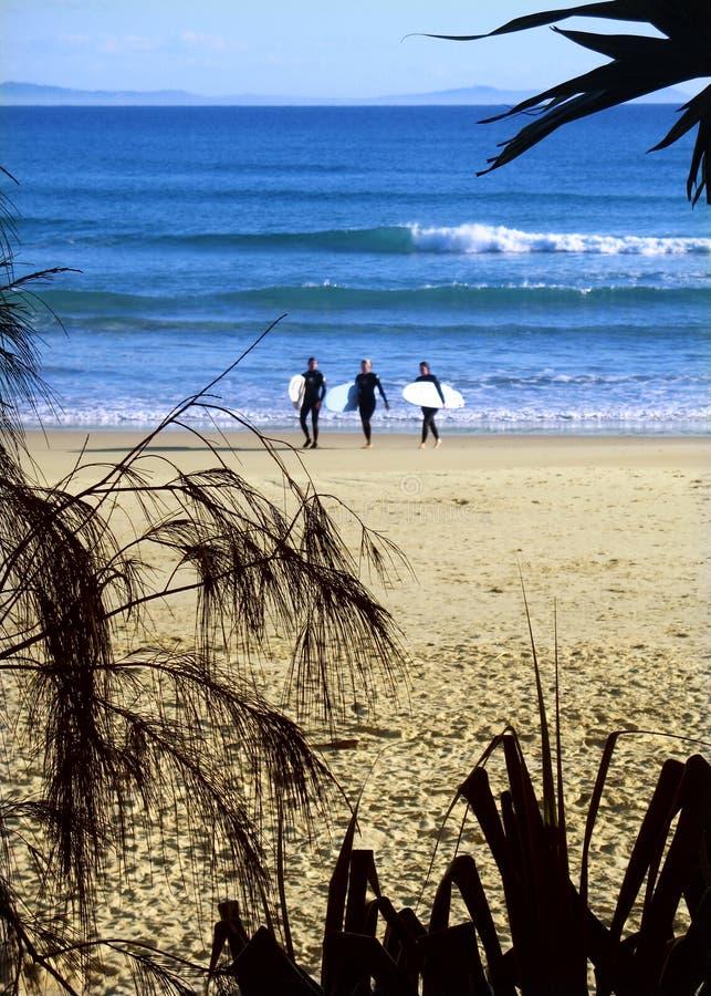Strand in Australië stock fotografie