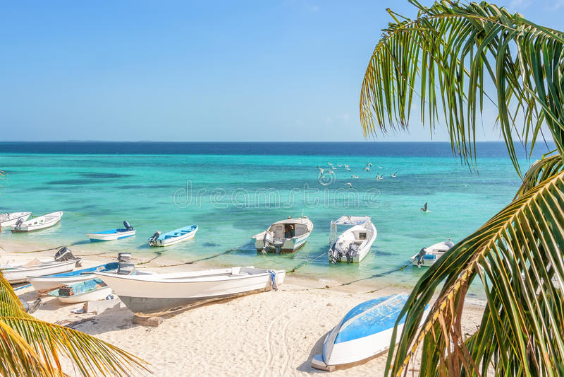 Strand av ön Gran Roque royaltyfri foto