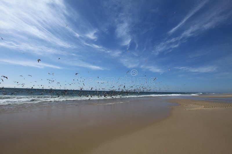 Strand av Areao arkivfoto