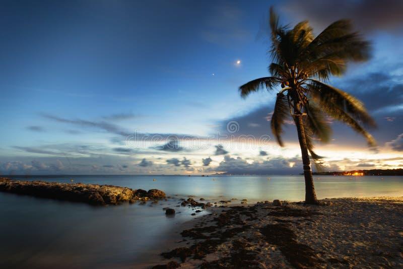 Strand av St Anne, Guadeloupe, efter solnedgång arkivbild