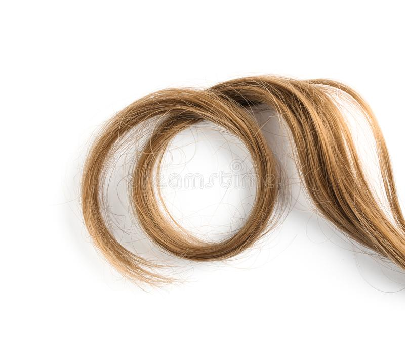 Strand of beautiful light brown hair on white background, top view. Hairdresser service stock image