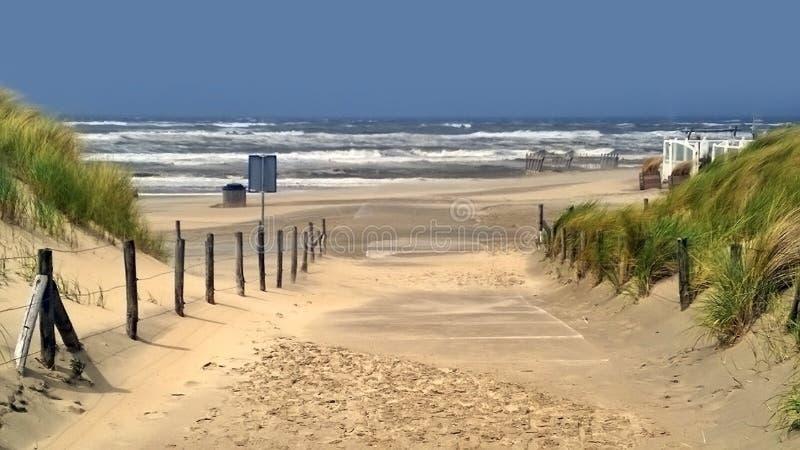 Strand bei Noordwijk in den Niederlanden lizenzfreies stockfoto