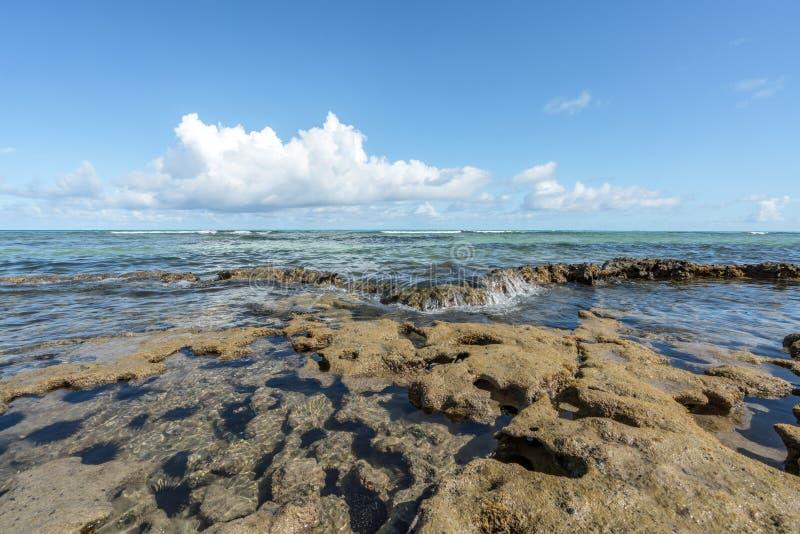Strand bewegt in eine tropische korallenrote Bildung an Carneiros-Strand pro wellenartig stockbilder