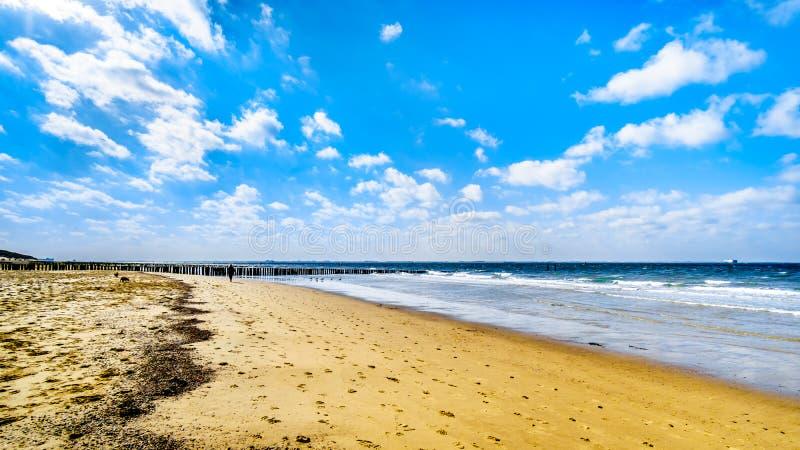 Strand bij de Noordzee en Westerschelde dichtbij de havenstad van Vlissingen in Zeeland Provincie stock foto's