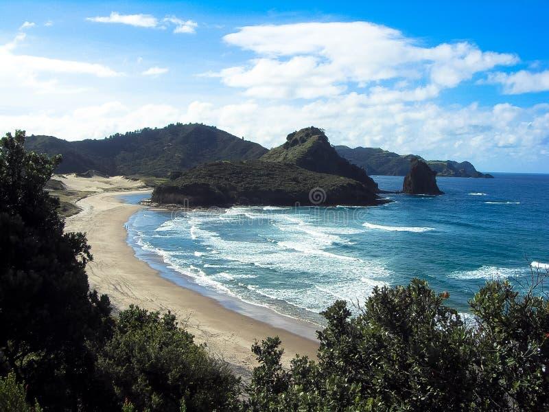 Strand bij Groot Barrièreeiland, Nieuw Zeeland stock foto's