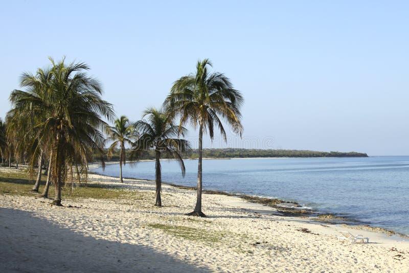 Strand bij La Gorda van Maria stock fotografie