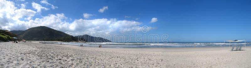 strand brazil arkivfoton